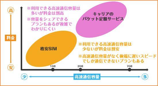 格安SIMの制限